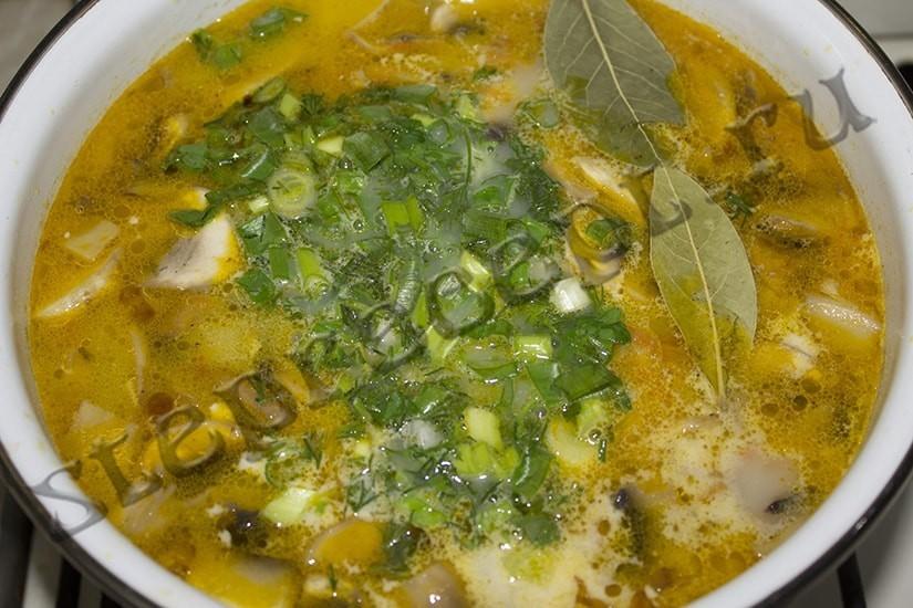 Грибной суп с плавлеными сырками