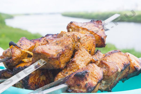 Мясо в соевом соусе – маринад для шашлыка