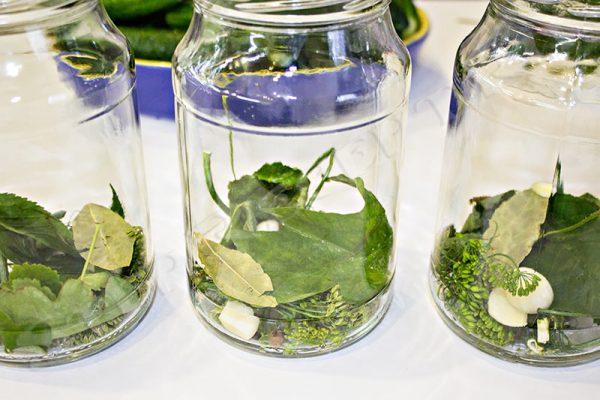 маринованные огурцы простой рецепт на зиму