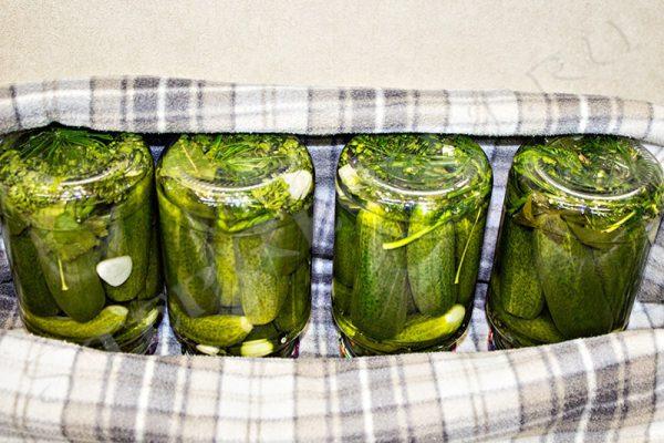 огурцы маринованные на зиму хрустящие 1 литровую