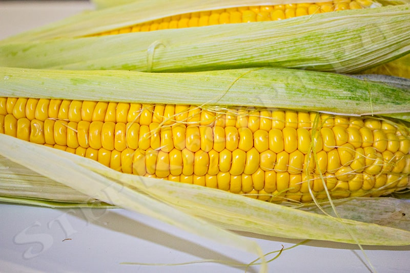 как вкусно сварить кукурузу в початках